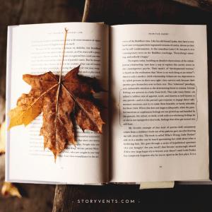 5 Eigenschaften Autorinnen Bestseller Scheiben
